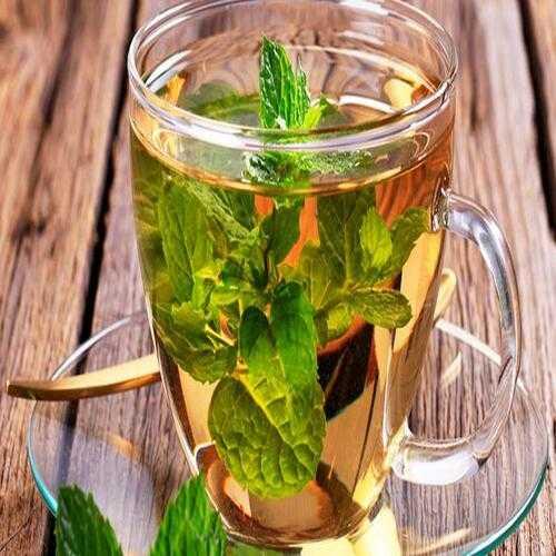 Chá de Hortelã (Foto: Reprodução/Opas)