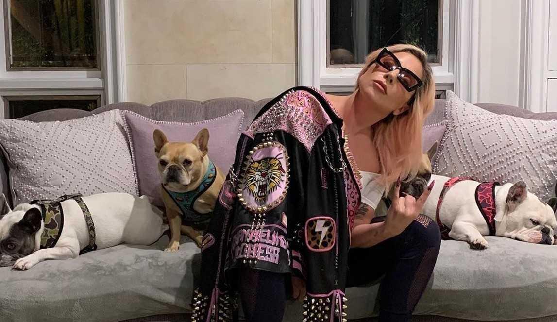 Suspeitos de sequestrar cachorros de Lady Gaga são indiciados