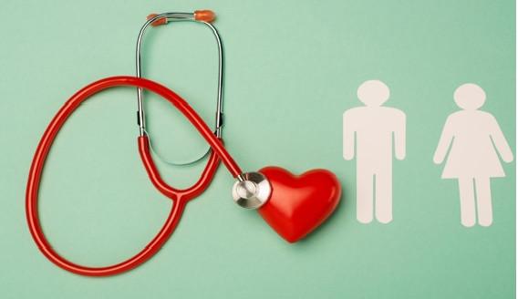 Mito desconstruído: Colesterol é vital para seu corpo