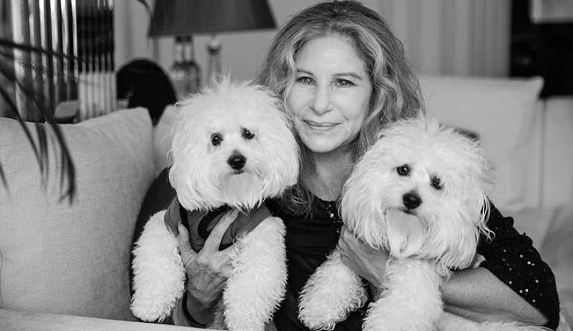 Conheça o álbum 'Release Me' da Barbra Streisand