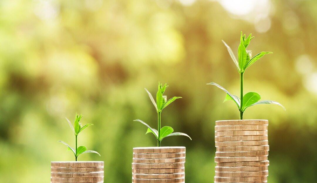 Investidores requerem padrões para produtos financeiros sustentáveis