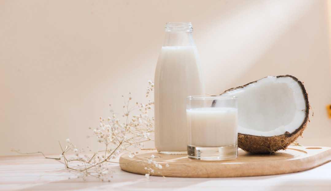 Três receitas com leite de coco para os seus cabelos