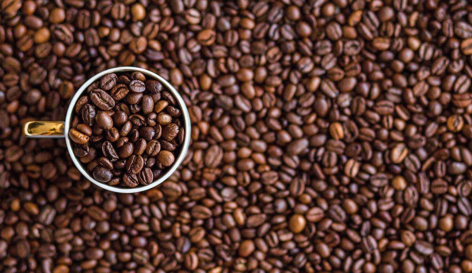 Café pode ficar até 40% mais caro em setembro, segundo análise